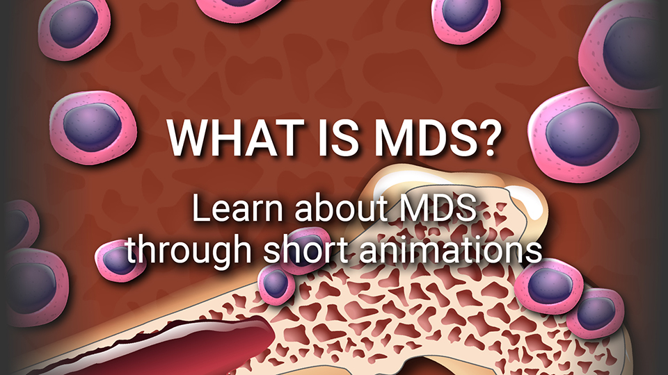 What Is Mds >> You And Mds