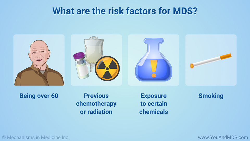 What are the risk factors for MDS?