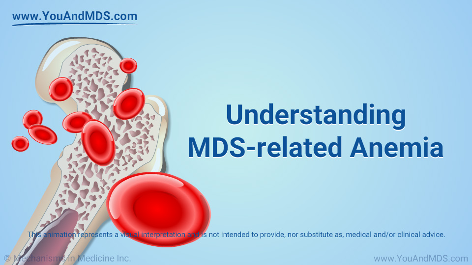 MDS-related Anemia