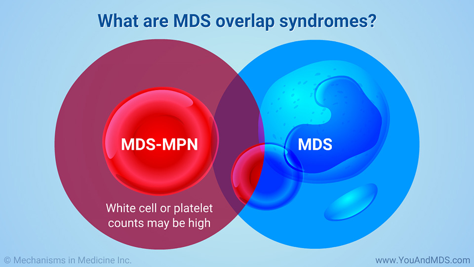 What are MDS overlap syndromes?
