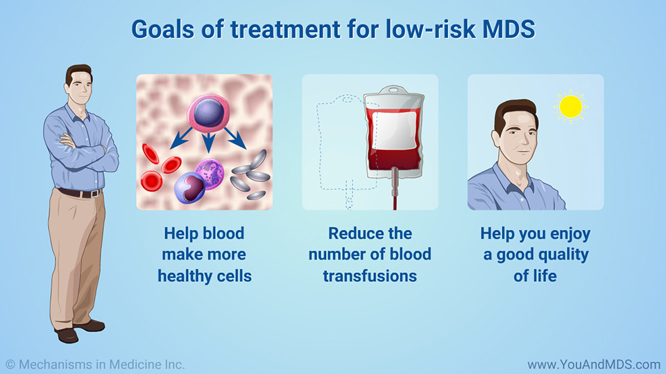 Goals of treatment for low-risk MDS