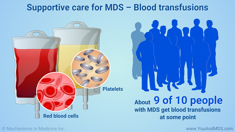 Supportive care for MDS – Blood transfusions