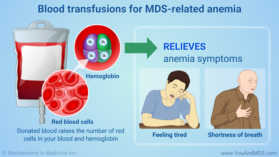 Blood transfusions for MDS-related anemia