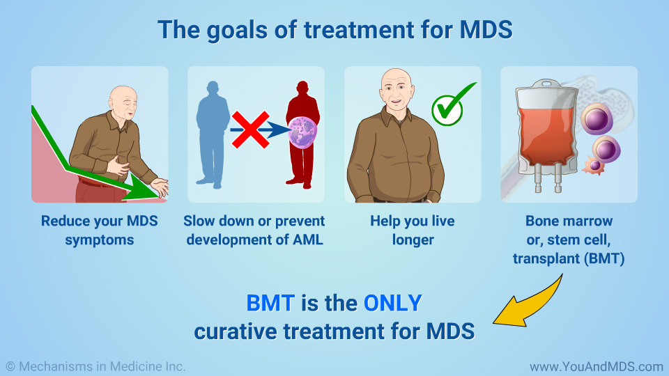 The main treatments for MDS