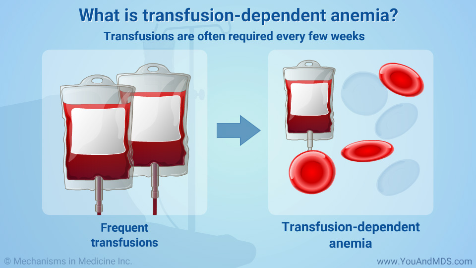 What is transfusion-dependent anemia?