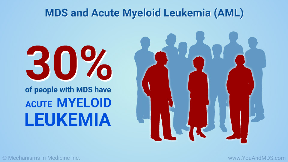 MDS and Acute Myeloid Leukemia (AML)