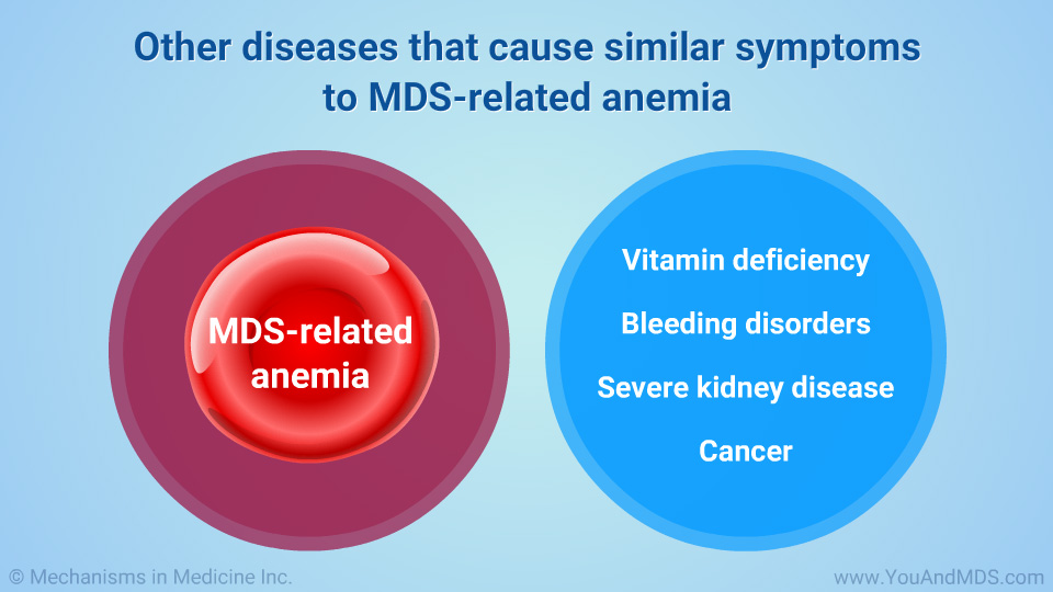 Other diseases that cause similar symptoms to MDS-related anemia
