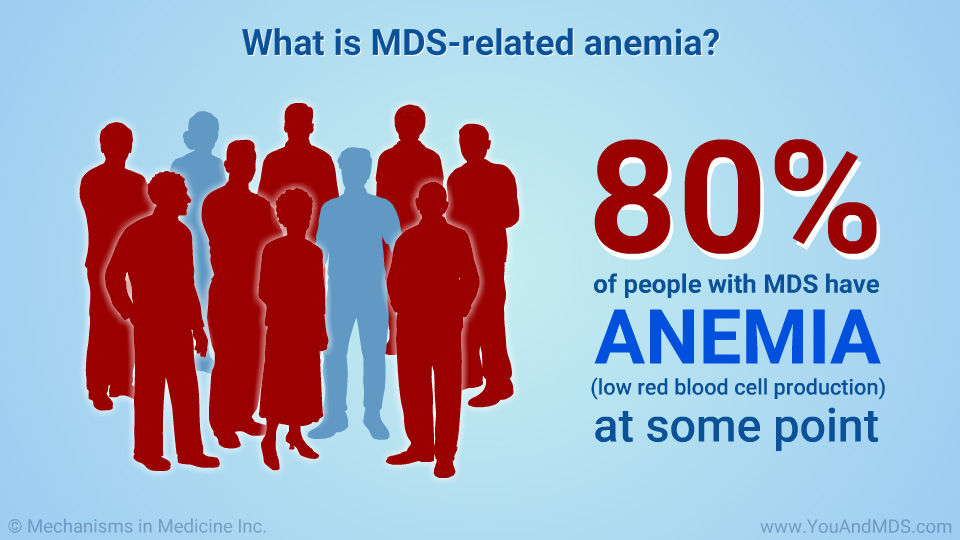 What is MDS-related anemia?